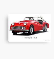 1958 Triumph TR3 Roadster Metal Print