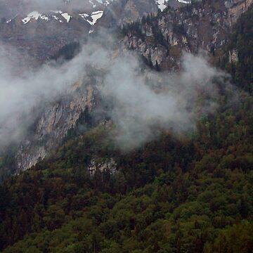 Mountain Morning Fog by skywalkin