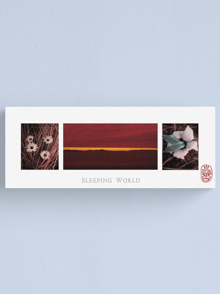 Alternate view of Sleeping World Canvas Print