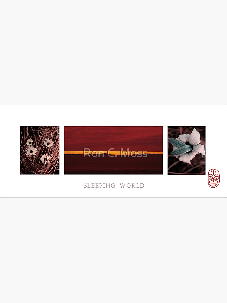 Sleeping World by ronmoss