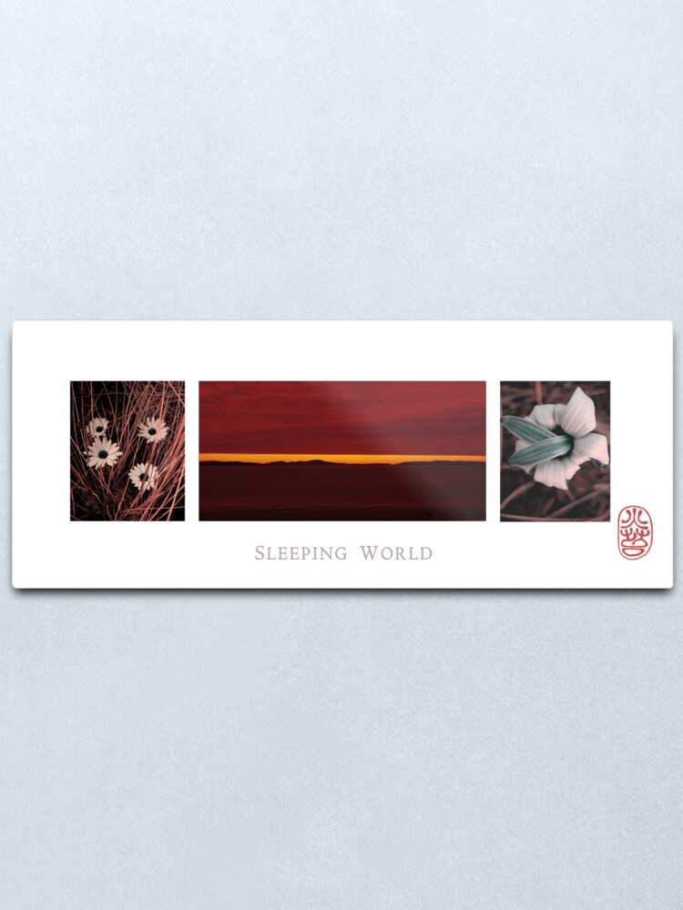 Alternate view of Sleeping World Metal Print