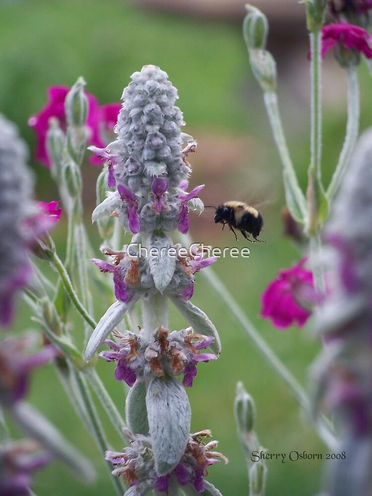 Busy Little Bee  by ChereeCheree