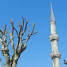 The Minaret by hans p olsen