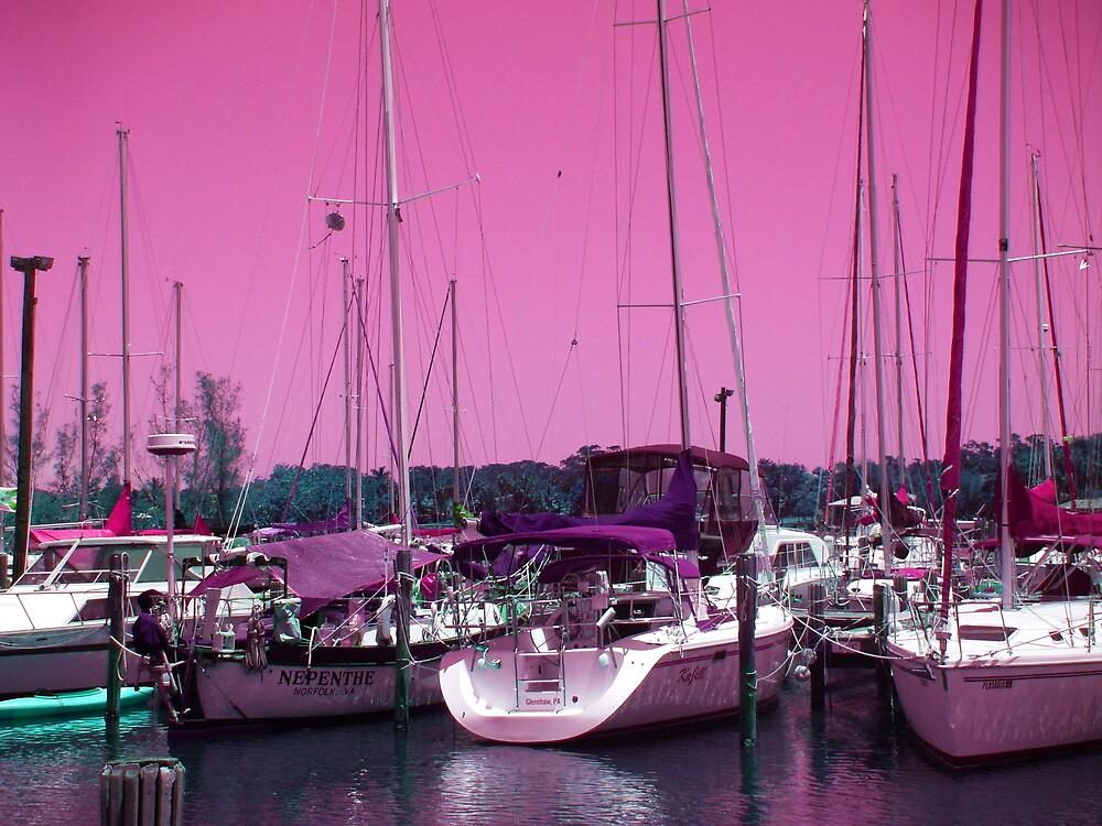 The Marina by Sheila McCrea