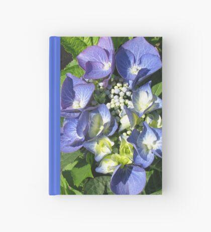 Blaue Spitzenkappe - Hortensienblüte Notizbuch