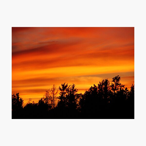 Nature's Watercolor Photographic Print
