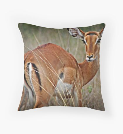 Shy Impala Throw Pillow
