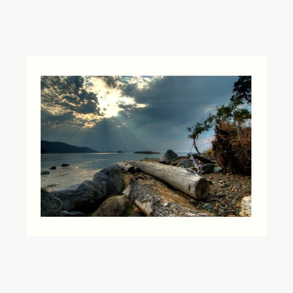 Before the Storm, Cabbage Island Art Print