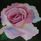 The Rose by Alison Howson
