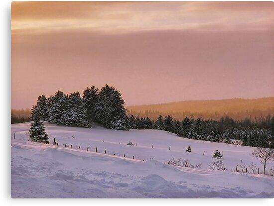 Winter Scene by Gino Caron