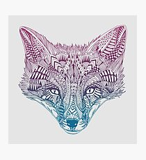 Fox (Clever) Photographic Print