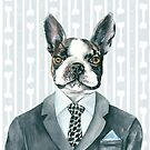 Boston Terrier Suited by Helen Ashley