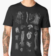 Vintage Anatomy Print  Men's Premium T-Shirt