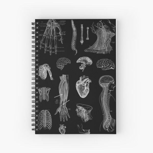 Vintage Anatomy Print  Spiral Notebook