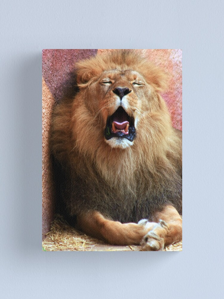 Alternate view of The King got Bored!!!! Canvas Print