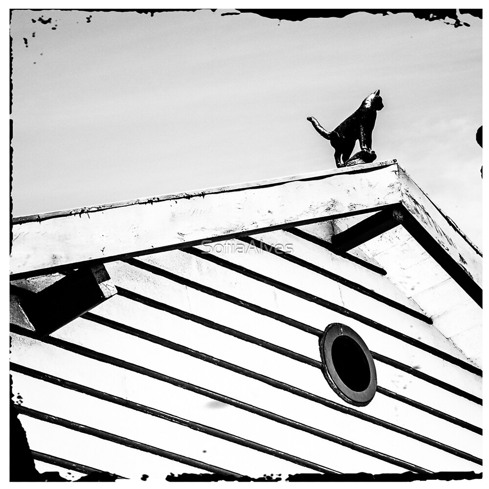 Cat on a Roof by SofiaAlves