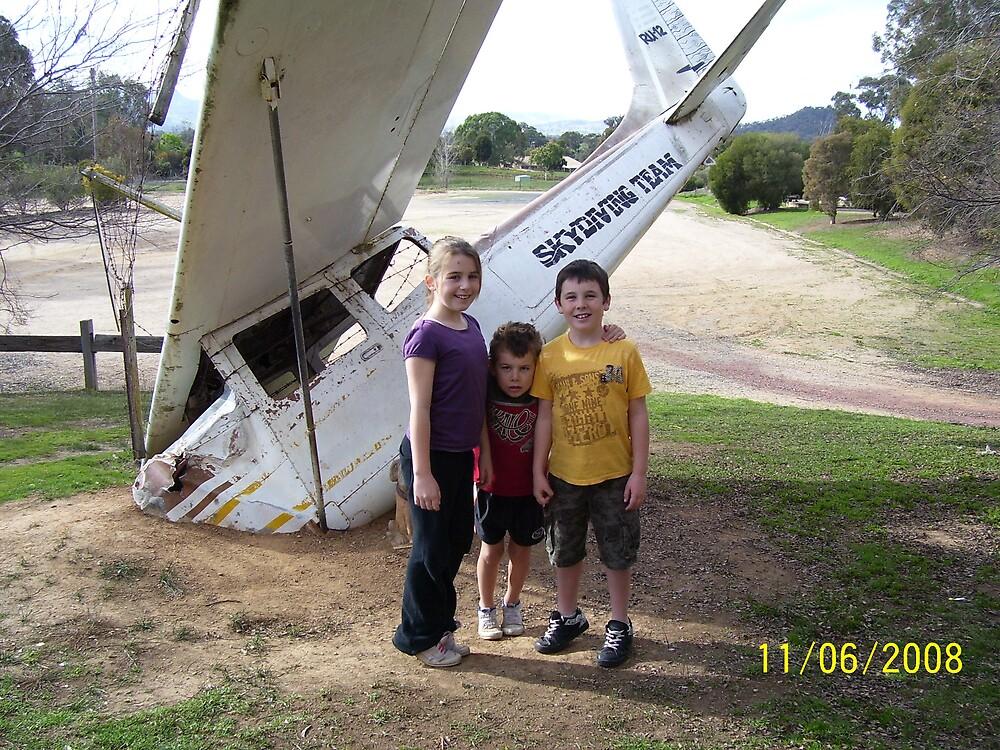 Plane down at Ettamogah by tigerboy9