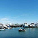 Plymouth Harbor by Bine