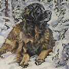 Leonberger Fine Art Painting by lashepard