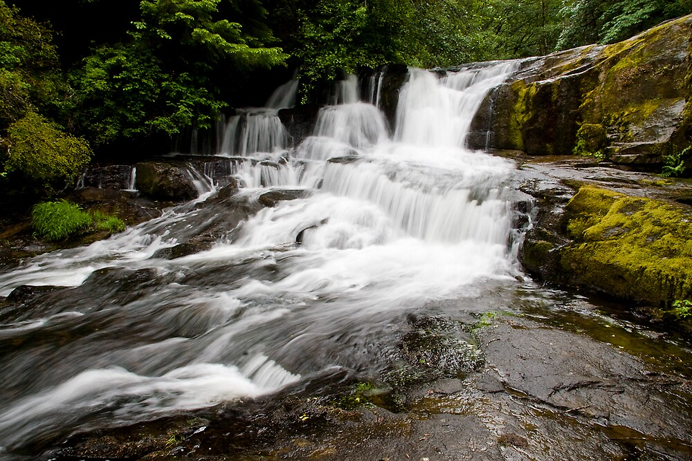 Alsea Falls in the spring by OrPhotoJohn