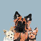 German Shepherd and 2 yorkies by VieiraGirl
