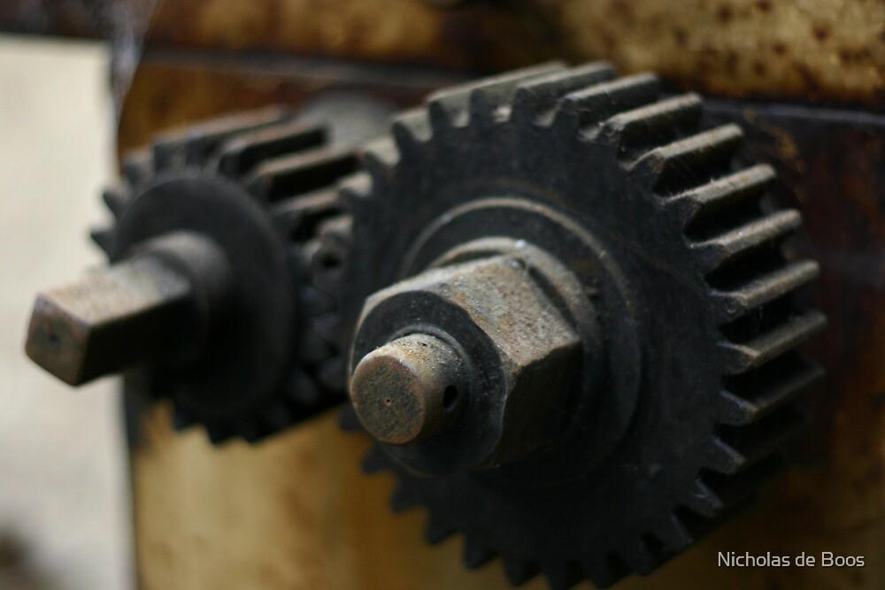 In-cog-nito by Nick de Boos