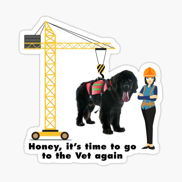 Honey Its time to go to the Vet again Sticker