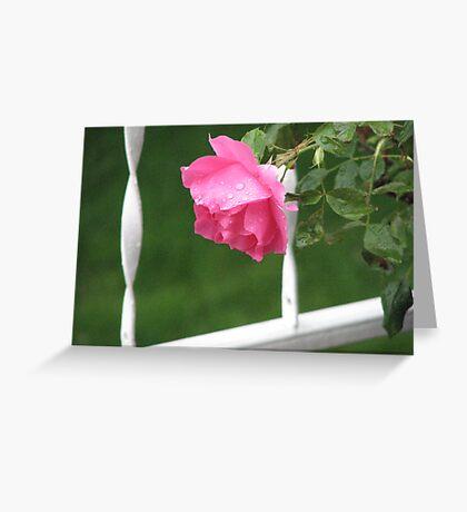 My Rose #3 Greeting Card