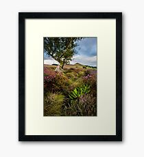Hawnby Hill and Heather Framed Print