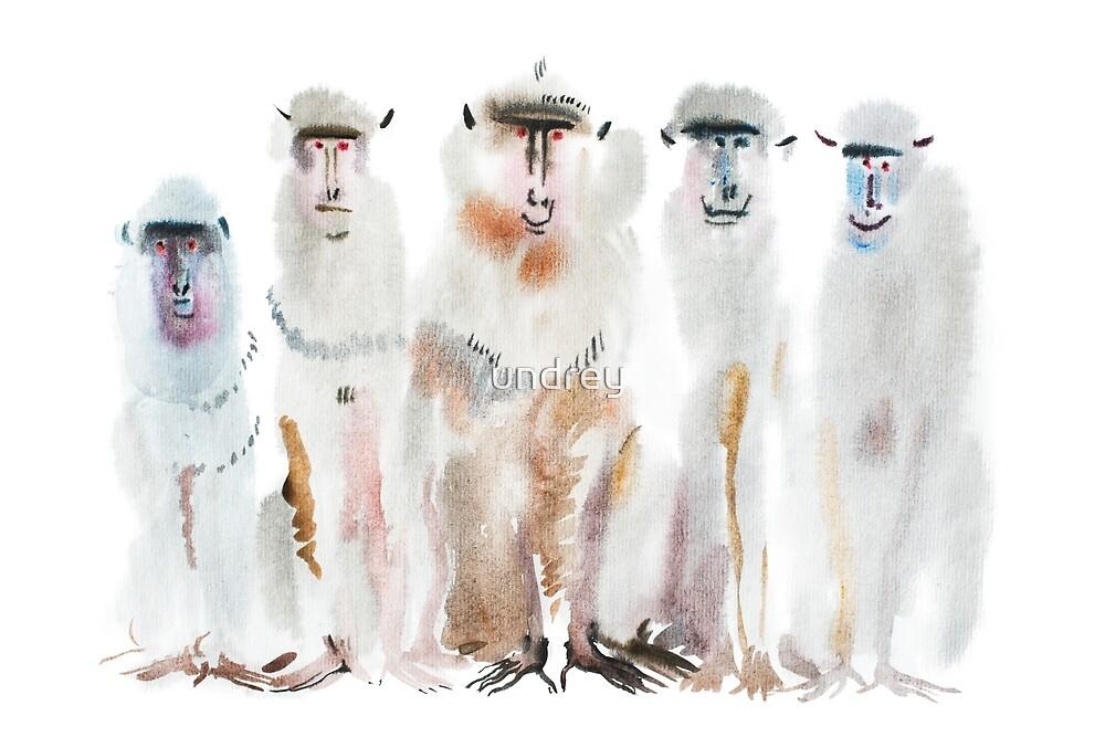 Watercolor portrait of monkeys by undrey