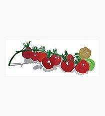Cherry Tomatoes watercolor Photographic Print
