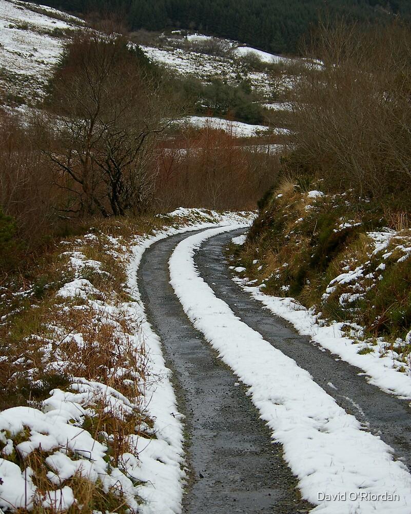 Winter In Ireland by David O'Riordan