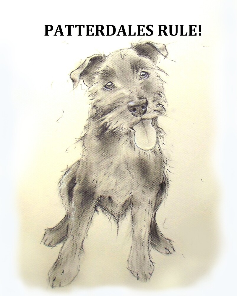 PATTERDALES RULE Patterdale Terrier Dog  by TheWishingShed