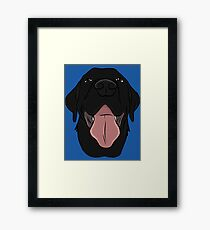 Happy Black Lab Framed Print
