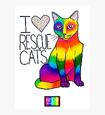 I (Heart) Rescue Cats Photographic Print