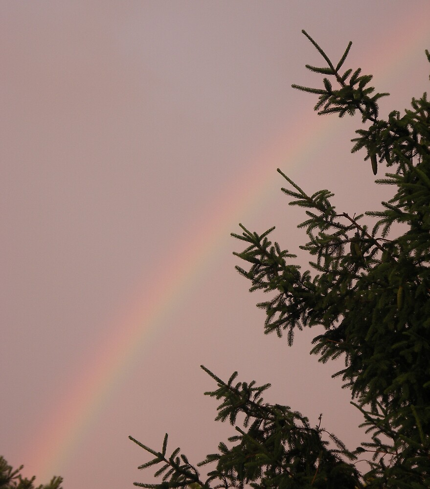 Sunset Rainbow - 2 by Marilyn Jones