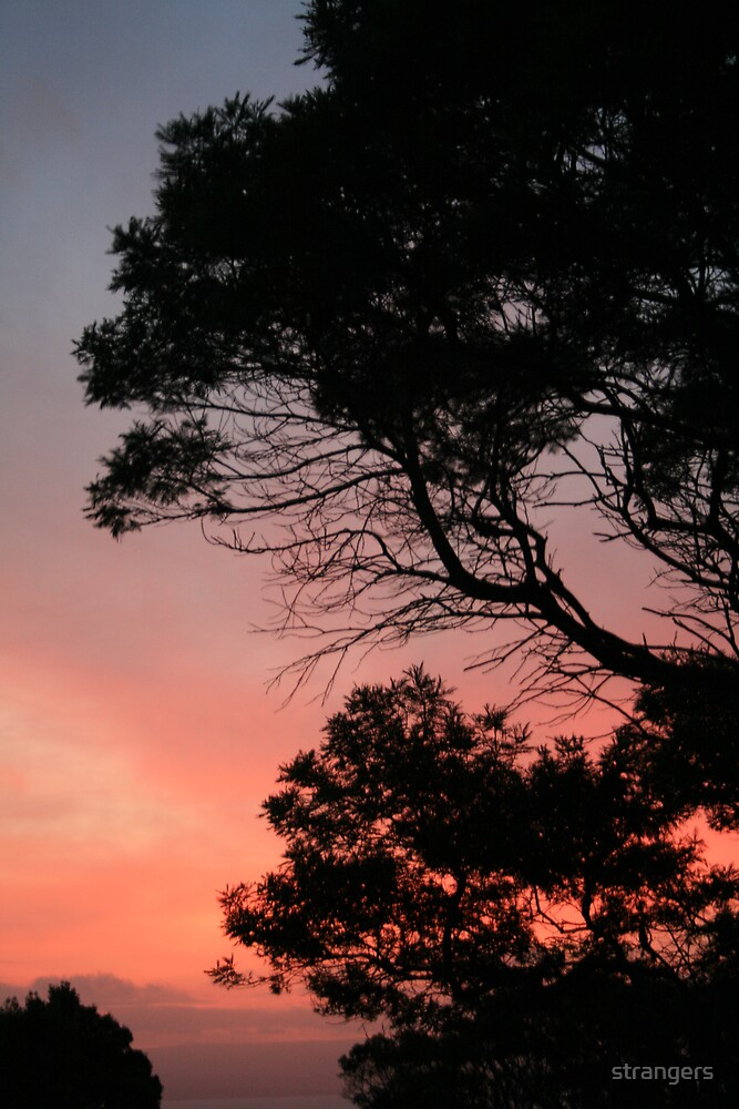 Firey sunset by strangers