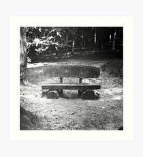 Wood bench Art Print