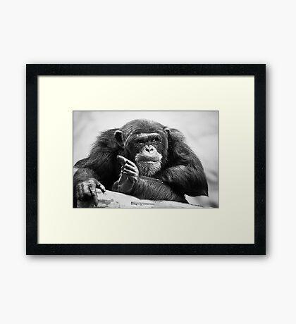 You talking to me? Framed Print