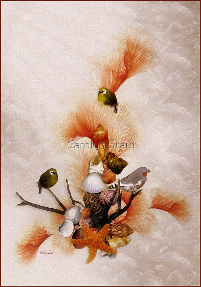 Morning Song by Carolyn Staut