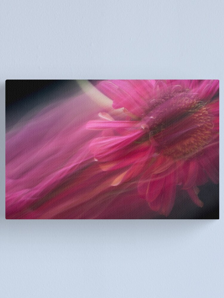 Alternate view of Fleur Blur-Abstract Pink Gerbera Daisy Canvas Print