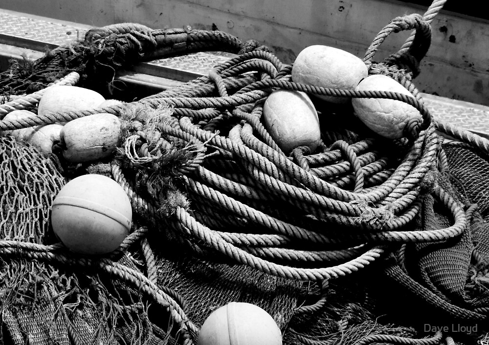 Net And Floats Too by Dave Lloyd