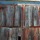 Stable Doors, Bendigo by Alison Howson