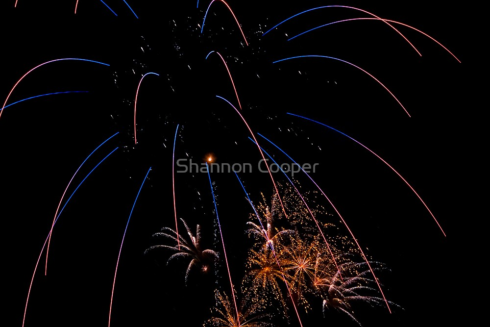 Fourth of July by Shannon Beauford