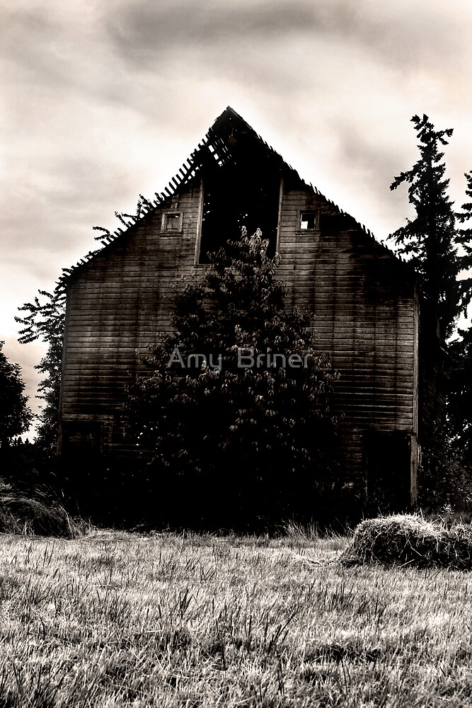 Old Barn by Amy  Briner