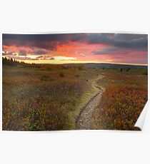 Dolly Sods Twilight Trail Poster