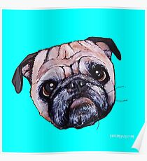 Butch the Pug - Cyan Poster