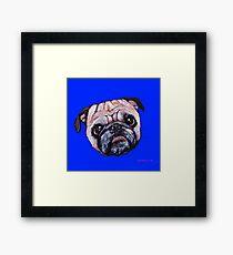 Butch the Pug - Blue Framed Print