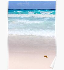 Pink Sand, Blue Ocean Poster