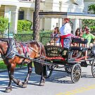Charleston City Tours by Southern  Departure